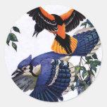 El volar de los arrendajos azules de los pájaros d etiqueta