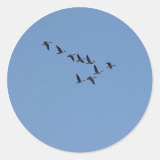 El volar de los gansos pegatinas redondas
