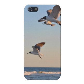 El volar en la playa iPhone 5 carcasa