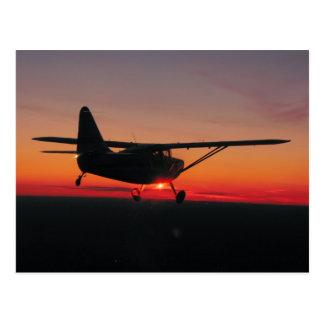 El volar en la postal de la puesta del sol