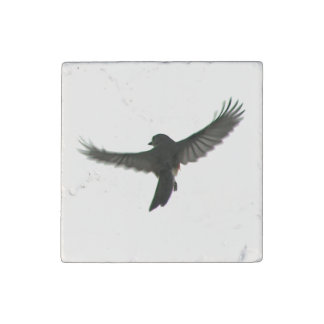 El volar imán de piedra