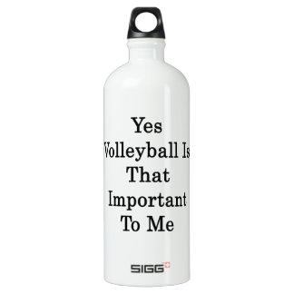 El voleibol es sí ése importante para mí