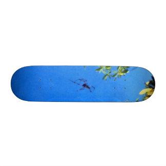 El vuelo de la araña skateboards