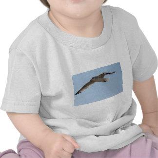 El vuelo de la gaviota camisetas