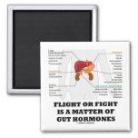 El vuelo o la lucha es una cuestión de hormonas de imán de frigorífico