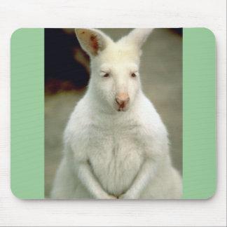 El Wallaby de Bennet del albino Tapetes De Ratones