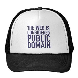 El Web se considera public domain - azul Gorras