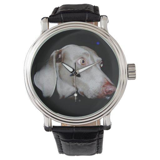 El Weimaraner Relojes