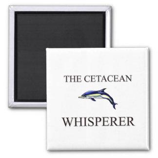 El Whisperer cetáceo Imanes