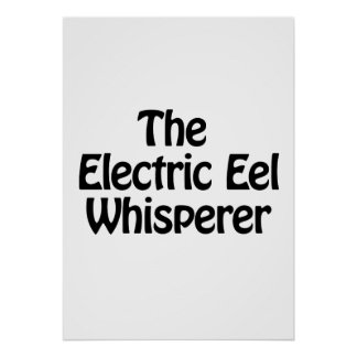 el whisperer de la anguila eléctrica póster