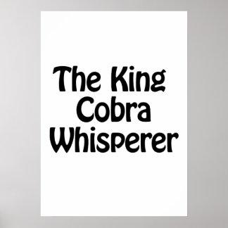 el whisperer de la cobra real póster