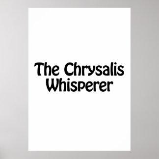 el whisperer de la crisálida póster