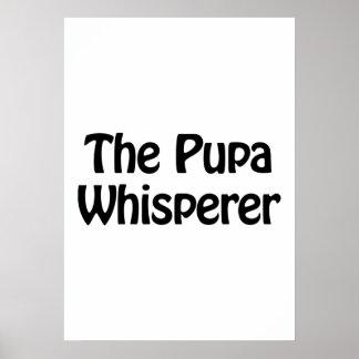el whisperer de las crisálidas póster
