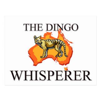 El Whisperer del Dingo Postal