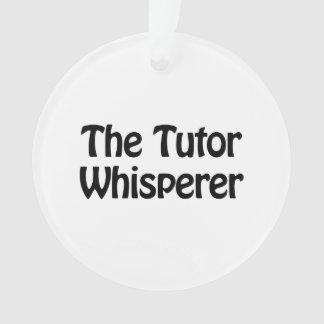 el whisperer del profesor particular