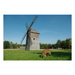 El widmill y una cabra - poster