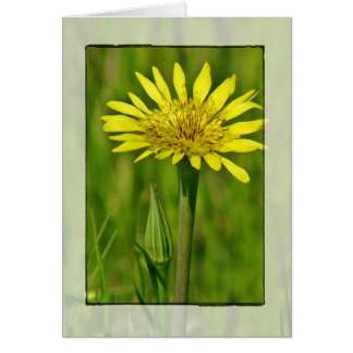 El Wildflower amarillo le agradece tarjeta de feli