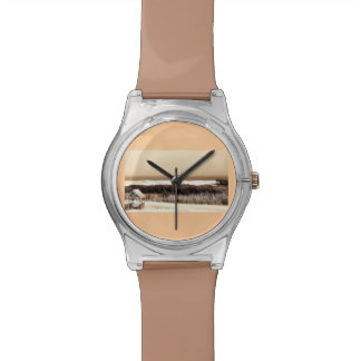 El Wildwoods Relojes