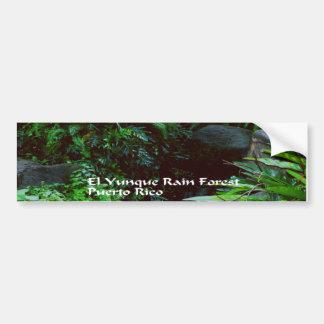 El Yunique Rainforest Bumper Sticker