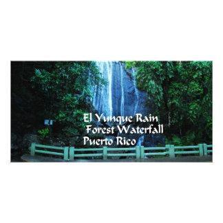 El Yunique Rainforest Card