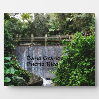 El Yunique Rainforest Plaque