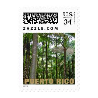 El Yunque National Rainforest, Puerto Rico Postage Stamp