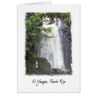 El Yunque, Puerto Rico Card