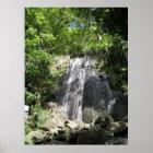 El Yunque Puerto Rico Framed Photo Poster