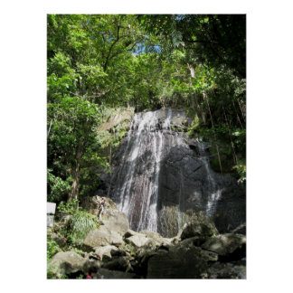 El Yunque Puerto Rico Framed Photo Poster