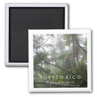 El Yunque, Puerto Rico Magnet