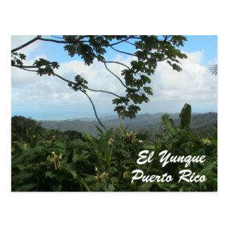 El Yunque, Puerto Rico Post Card