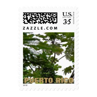 El Yunque, Puerto Rico Postage