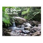 EL Yunque, Puerto Rico Tarjeta Postal