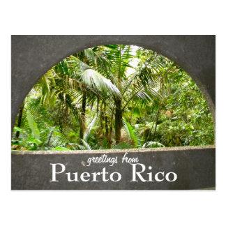 EL Yunque, Puerto Rico Tarjetas Postales
