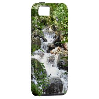 El Yunque Rain Forest, Puerto Rico iPhone SE/5/5s Case