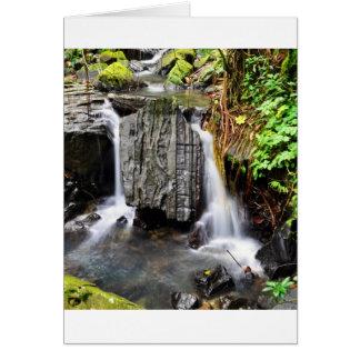 El Yunque Waterfall Card