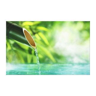 El zen del agua y de la naturaleza verde limpia de lona envuelta para galerias
