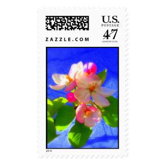 El zen florece franqueo sellos