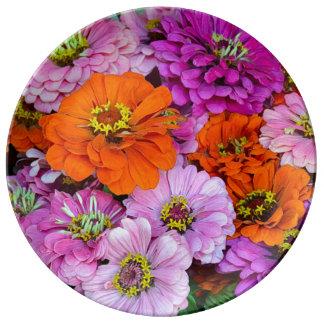 El zinnia anaranjado y púrpura florece la placa de platos de cerámica