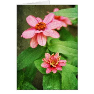 "El ""Zinnia florece"" tarjetas"