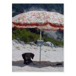 ela en la playa tarjeta postal
