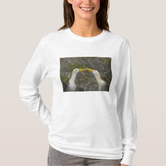 Elaborate courtship dance of Waved Albatros, T-Shirt
