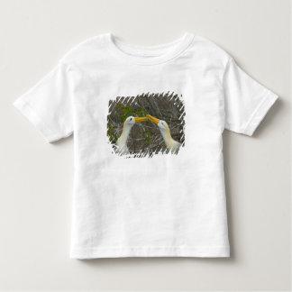 Elaborate courtship dance of Waved Albatros, Toddler T-shirt