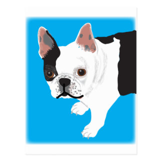 elaine scharnitzky's Boston Terrier Toby Postcard