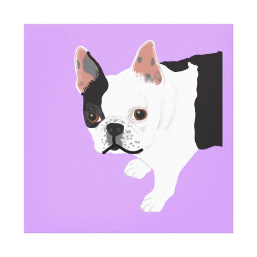 Elaine's Toby Boston Terrier Stretched Canvas Print