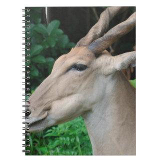 Eland  Notebook