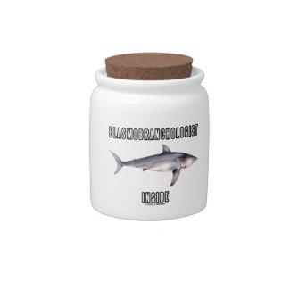 Elasmobranchologist Inside (Great White Shark) Candy Jars