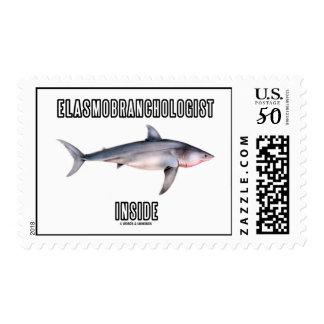 Elasmobranchologist Inside (Great White Shark) Postage