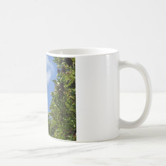 Elder Berries Classic White Coffee Mug
