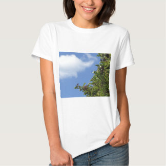 Elder Berries Shirts